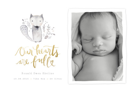 newborn photographer shreveport la